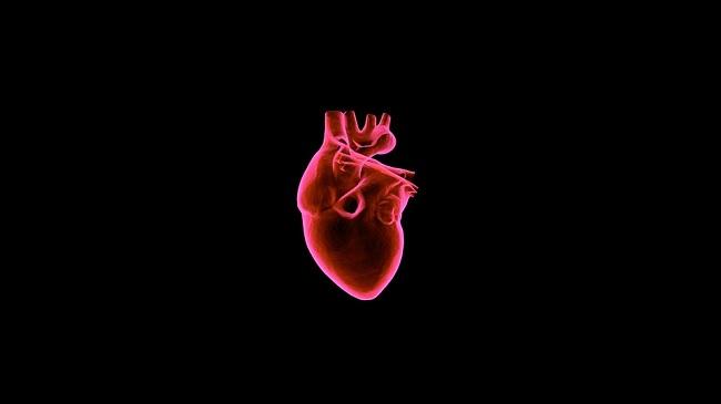 Cardiologia italiana Aranzulla tra le migliori cardiologhe del mondo